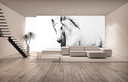 White horse bedroom wall mural